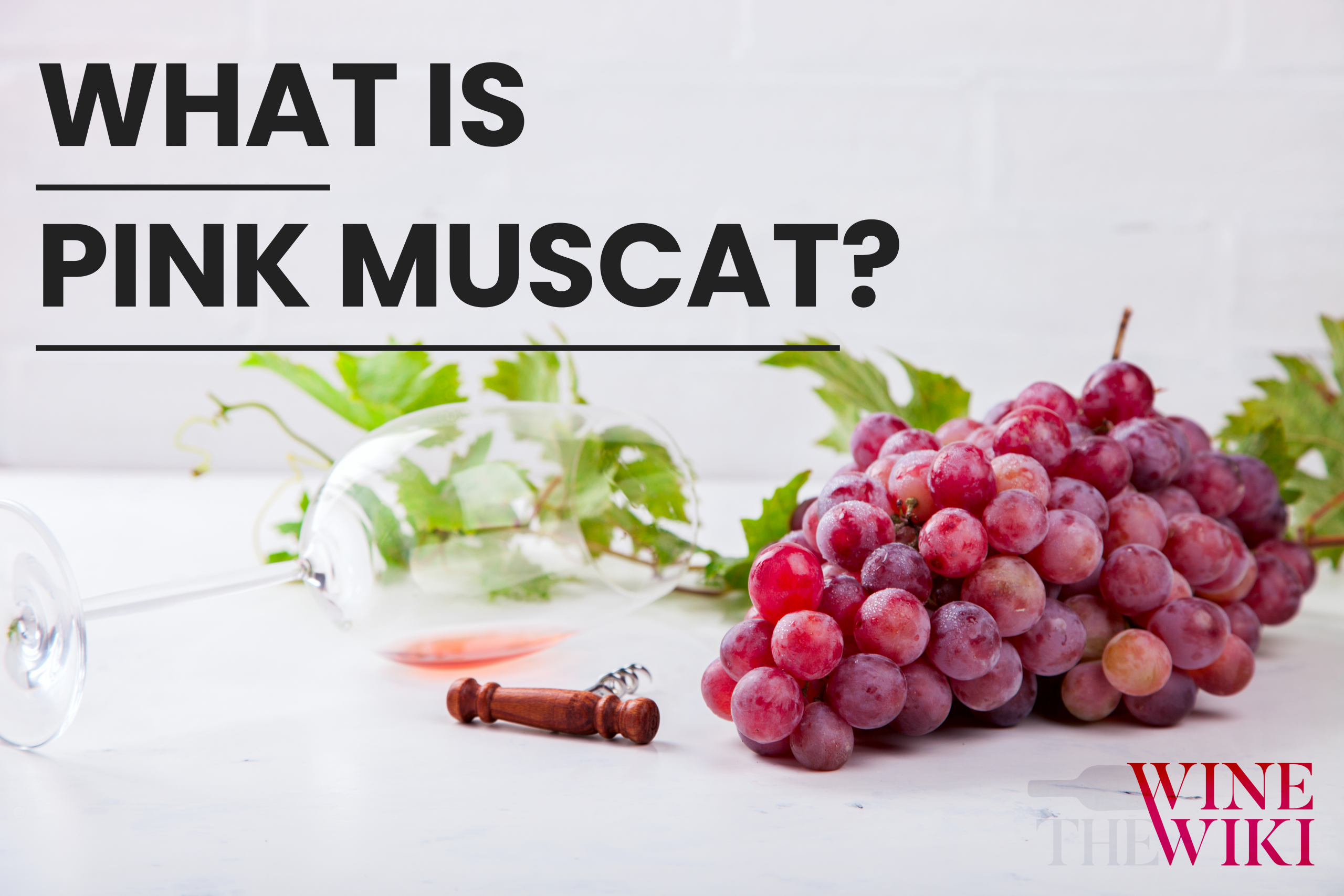 Moscato Rosa: What is Pink Muscat?